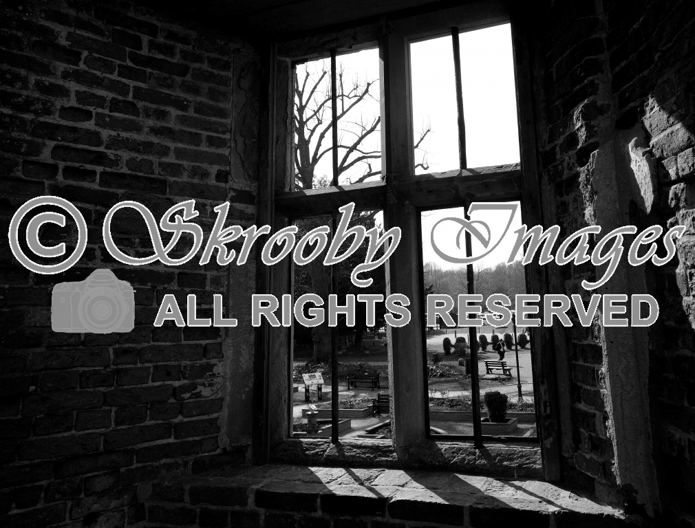 Room With A View ( Rufford Abbey,Nottinghamshire,England )